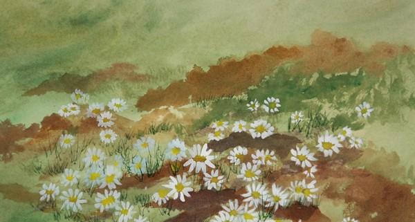 16x20 Watercolor $75.00