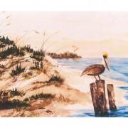 Pelican 7x5 Note Card